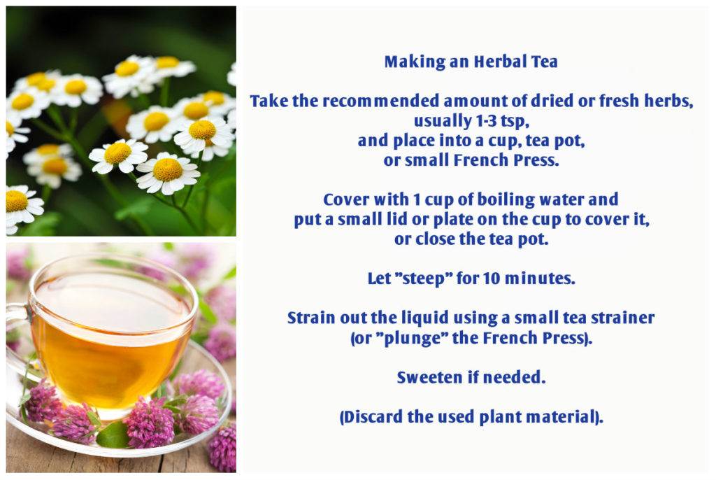 making an herbal tea