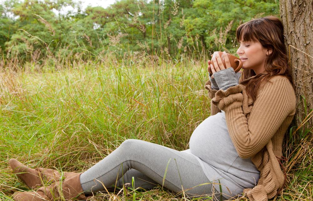 Herbal Medicines In Pregnancy What S Safe What S Not Aviva Romm Md