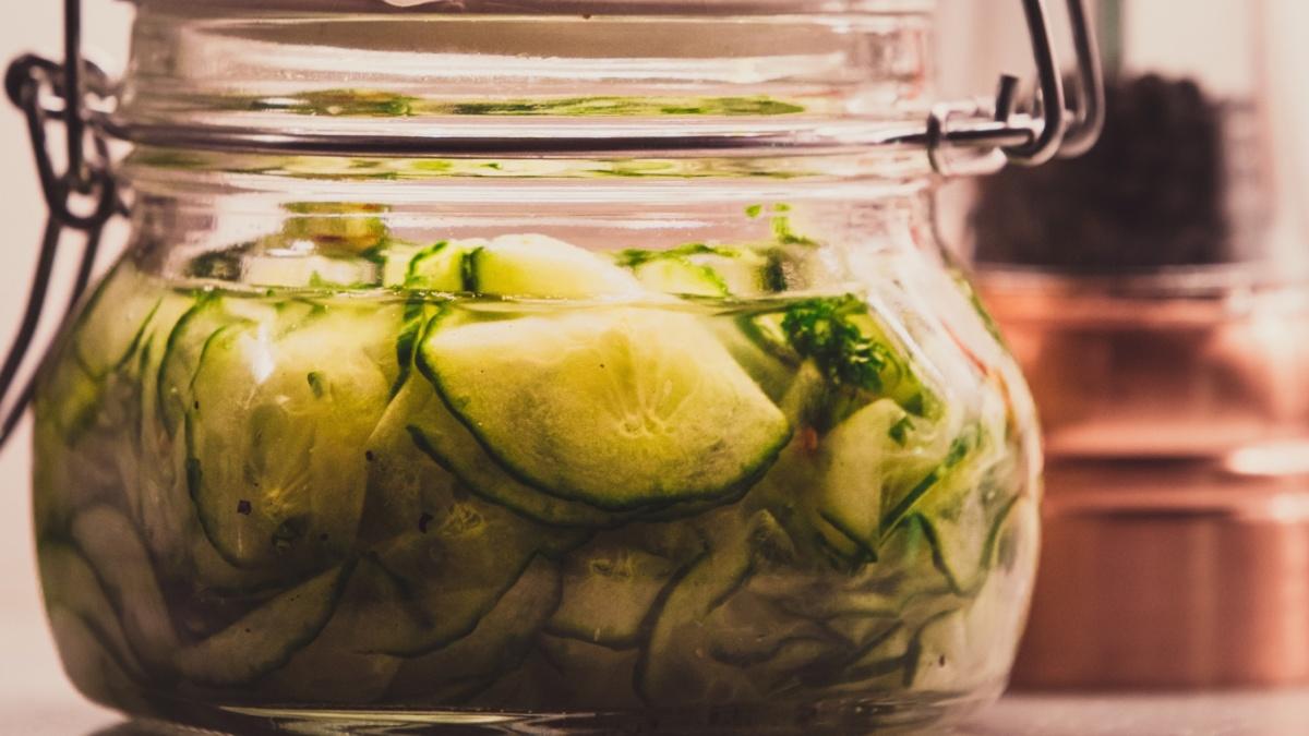 fermentationist